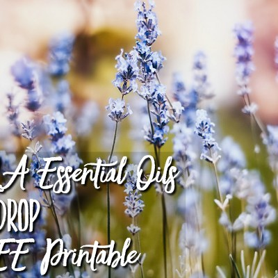 Updated 2019 doTERRA Essential Oils Price per Drop with FREE Printable!