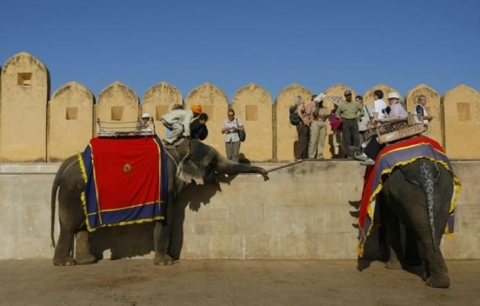 Blind Elephants in India