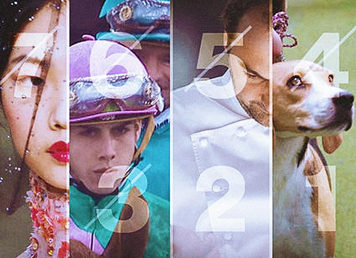 Une femme. Un jockey. Un chef cuisinier. Un chien. les chiffres 7, 6, 5, 4, 3, 2, 1.