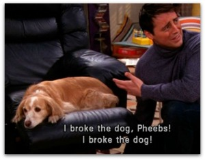 Friends I broke the dog