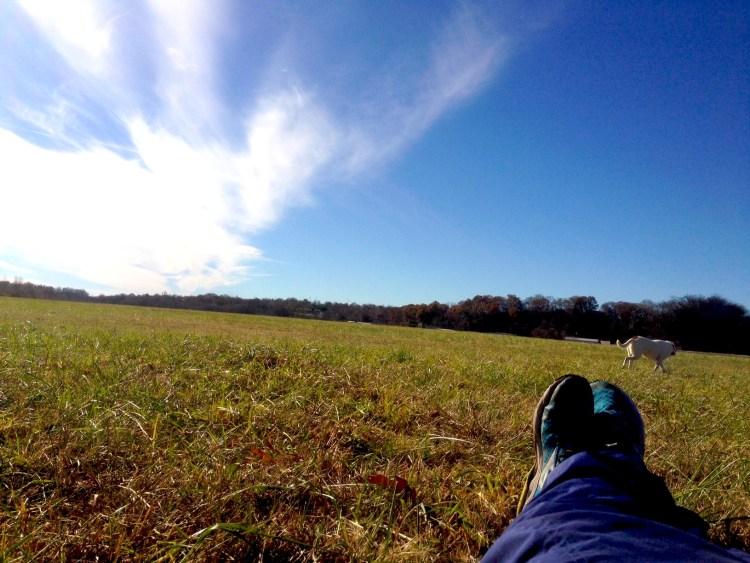 Taking a run break.