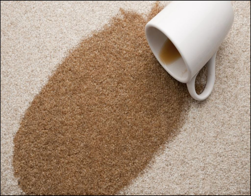 Best Coffee Stain Remover For Carpet