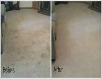 Carpet Cleaners Knoxville Tn | cruzcarpets.com