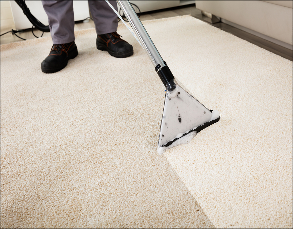 Carpet Cleaning Freehold Nj