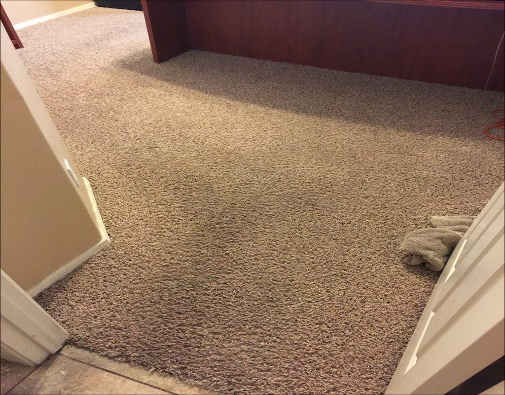 Carpet Cleaning Goodyear Az