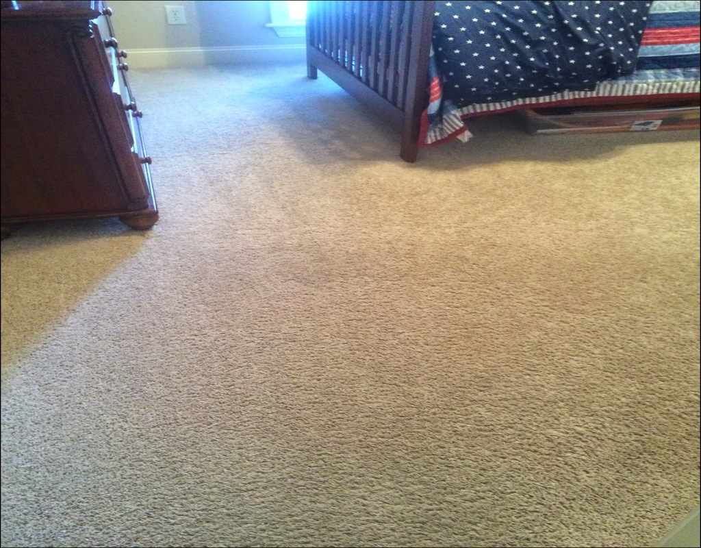 Carpet Cleaning Madison Ms