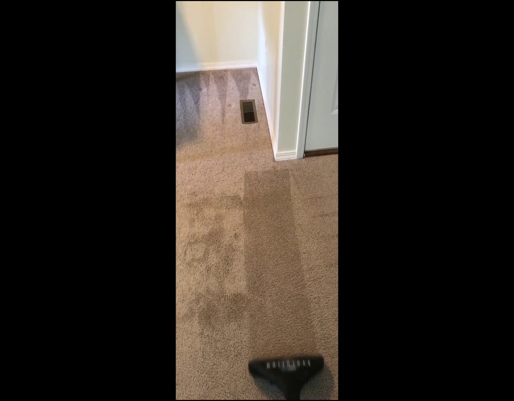 Carpet Cleaning Streamwood Il