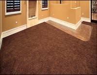 How Much Does Good Carpet Pad Cost | Review Home Co