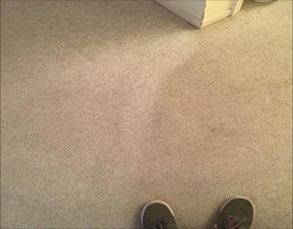 Jimmy Stuart Carpet Cleaning Ri