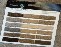 Possible Danger Signs on Stainmaster Pet Protect Carpet ...
