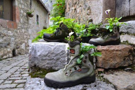 Botas floridas em Bulnes