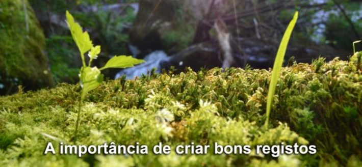 Natureza - Vale do Bestança