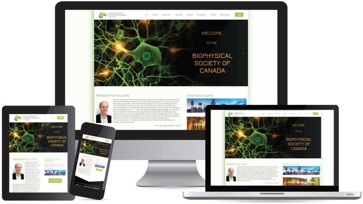 CryoDragon (Kitchener Waterloo Cambridge) Website Design Biophysical Society of Canada