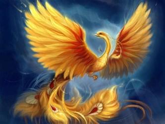 phoenix fenix mythical creatures awakened background feniks fantasy cryominute enlarge phenix wings птица google fly