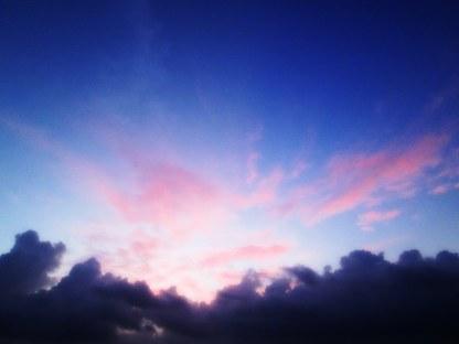 Lavender_Morning