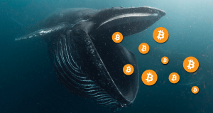 Данните за Биткойн показват, че китовете купуват на промоция