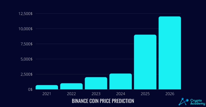 Binance Coin Price Prediction 2021 and Beyond - Will the BNB Price Surge Upwards?