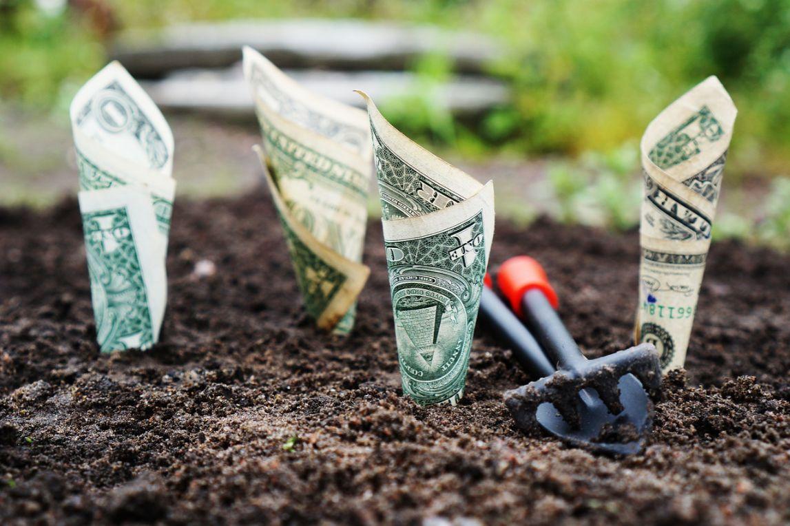 Kryptowährungen Dollar-Scheine in Erde gesteckt