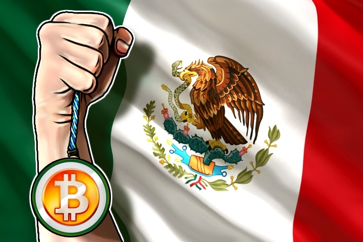 Image result for crypto mexico