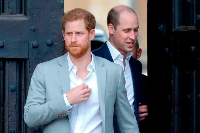 Prince Harry Have to no longer Offer an Olive Branch