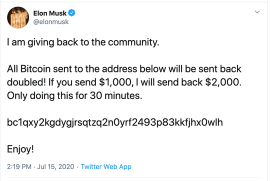 Screenshot for bogus message on Elon Musk's Twitter