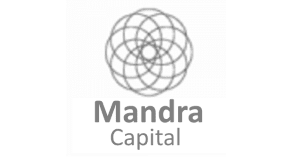 Mandra Capital top blockchain venture capital fund
