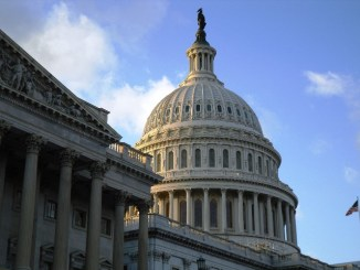 Bakkt CEO Was Appointed To The US Senate