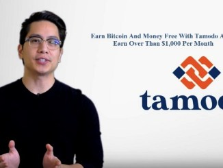 Earn Bitcoin And Money Free With Tamodo Affiliate - What Is Tamodo And How To Earn Over Than $1,000 Per Month?