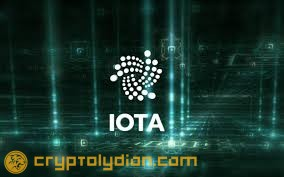 IOTA May Resume Operations 2 March After $2M Wallet Hack