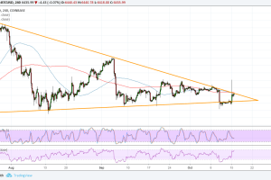 Bitcoin (BTC) Price Analysis: Spike Higher to Be Sustained?