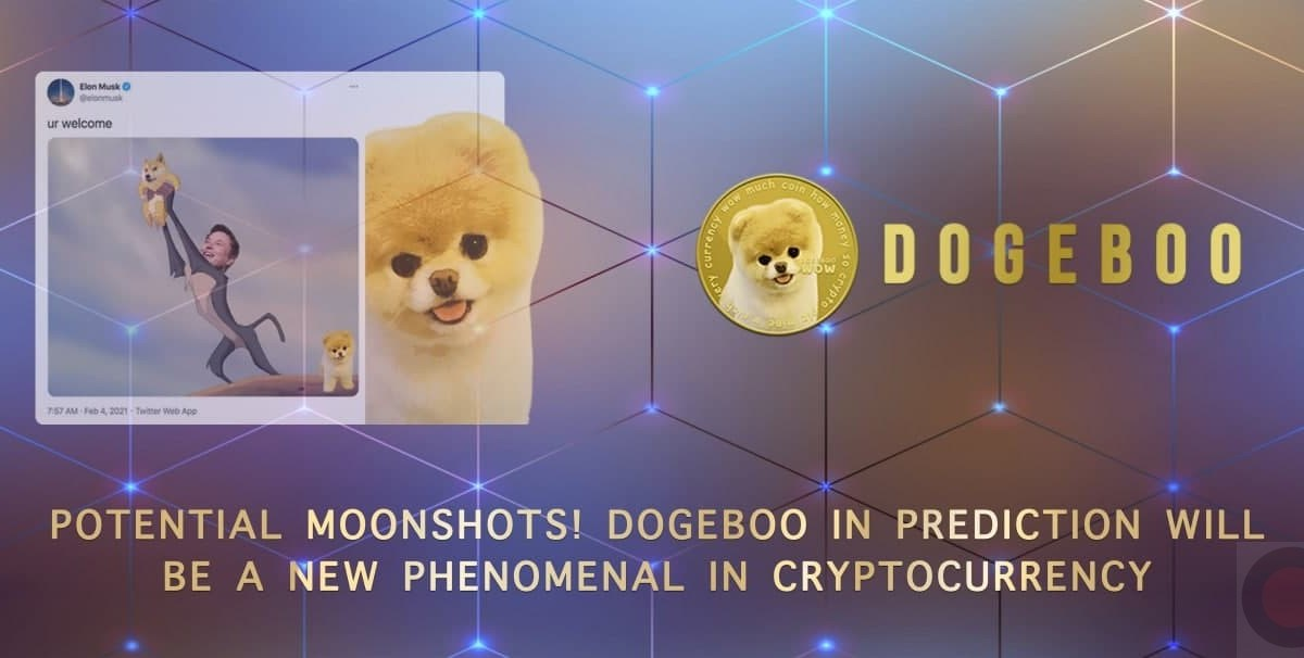 Potential Moonshots! Dogeboo in Prediction will be a New Phenomenal  in Cryptocurrency