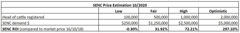 SENC Financial Analysis
