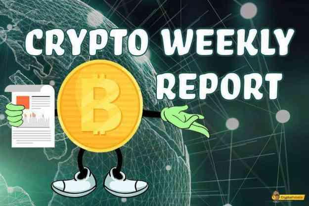 Bitcoin Weekly Market Update
