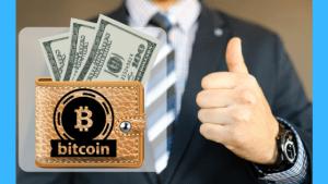 best bitcoin wallet in Nigeria