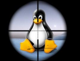 Вирус для Linux. Учимся писать шелл-коды.