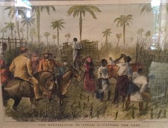 The Life of Indentured Servants in Colonial Barbados Cryssa Bazos