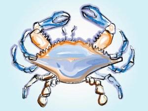 crab-illustration-vector-free