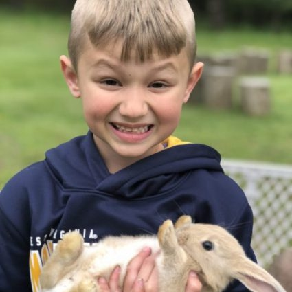Are bunnies good for kids?