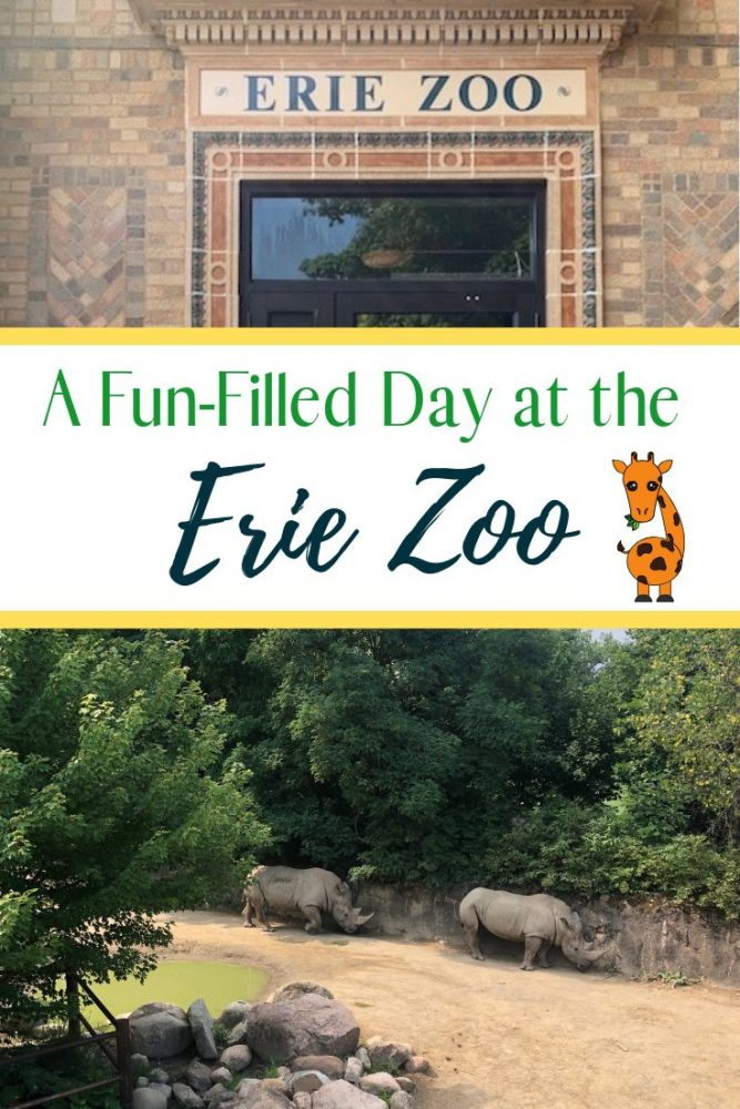 A Fun-Filled Day at the Erie Zoo
