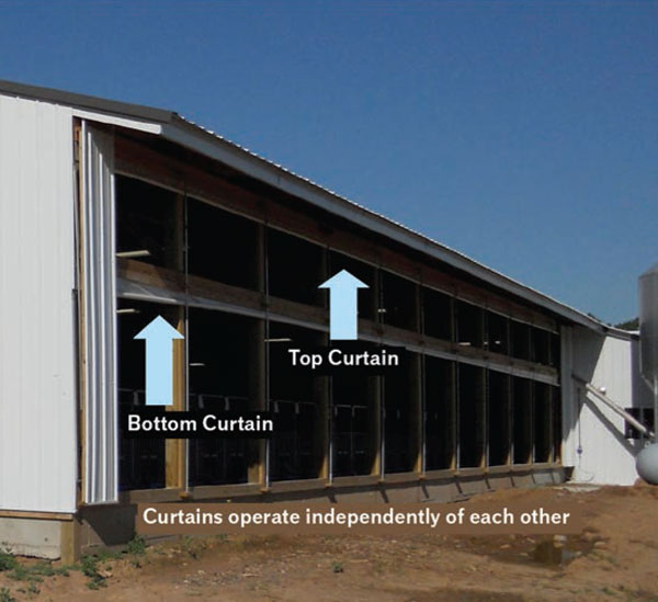Are You Building A New Calf Barn  Crystal Creek
