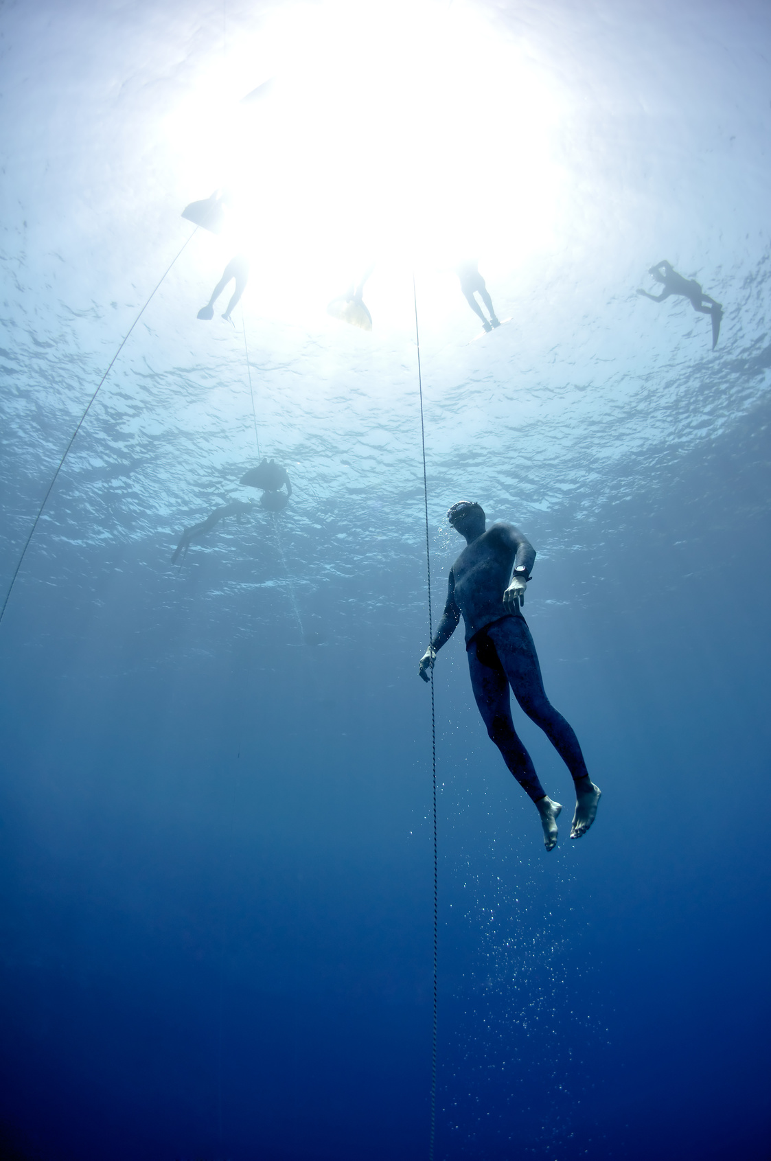 Free Diving Courses