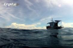 freediving3-001