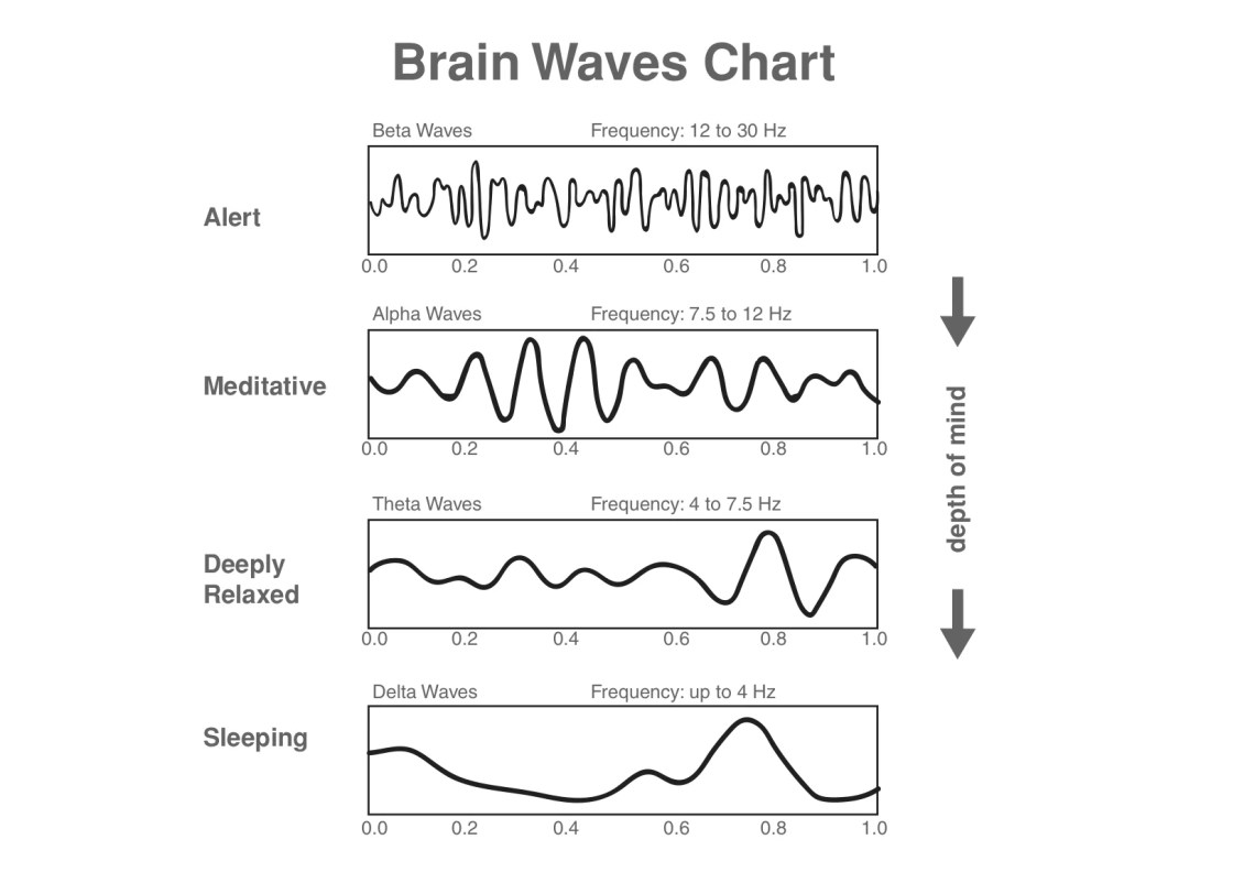 Image result for brainwaves