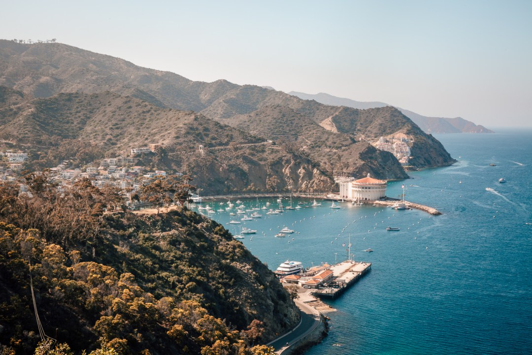 Catalina Island Day Trip Guide