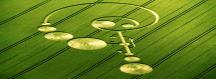 lucy_pringle_crop_circle960x350