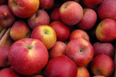 Brambletye: apples