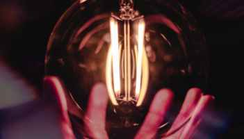 close up photo of person holding bulb
