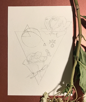 Collab-Rosa1