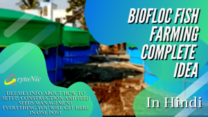 """Read more about the article Biofloc Kya Hai 