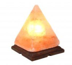 immagine di lamada di sale